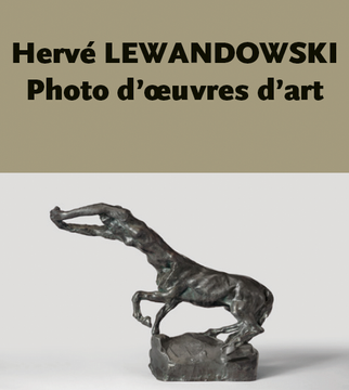 HERVE LEWANDOWSKI.png