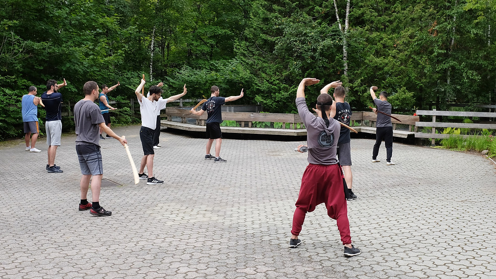 gong fu, kung fu, ymaa quebec, quebec, arts martiaux