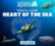 Family and Pet Guide, The Florida Aquarium, Heart-of-the-Sea, sea life, shark, turtle, fish