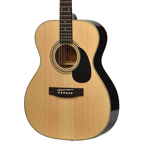 Headway Guitars HF-25