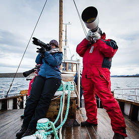 Students trying out the long lenses to catch the white tailed eagle on the Thomas Eckhoff Classic Norway Photo workshop at sea Haholmen near the Atlantic road.