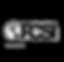 logo_FCSI.png