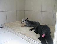 Comfortable Sacious Accommodation