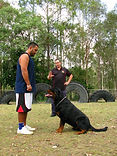 Redgum Obedience Training - Courses to Suit the Individual