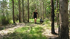 Bush walking available for boarding dogs
