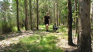 Redgums Bush Walk