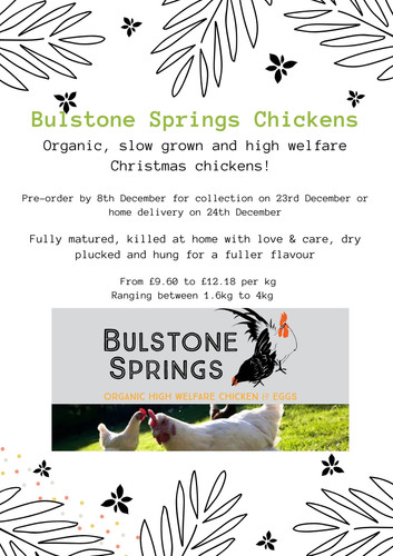 Bulstone Springs Chickens