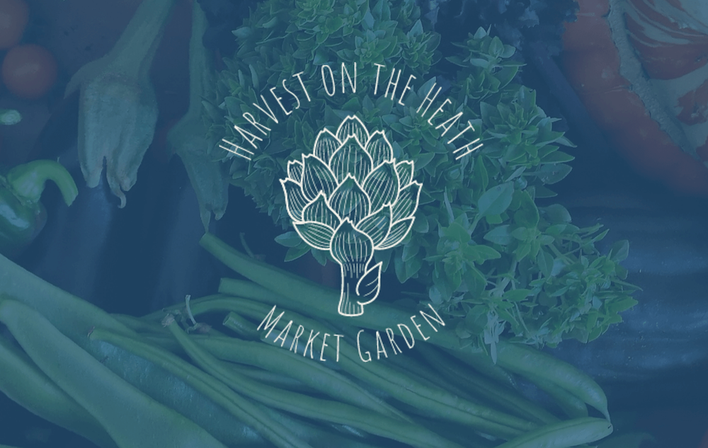 Harvest on the Heath Market Garden