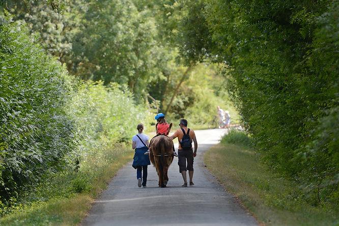 Du coq à l'âne chambre d hote, activité et viste pour enfant et toute la famille Marais Poitevin