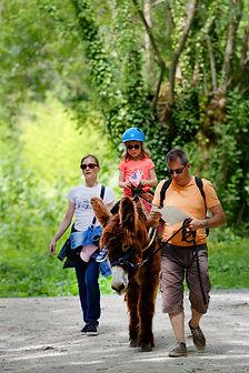 Randonnee avec un âne dans le Marais Poitevin Coulon