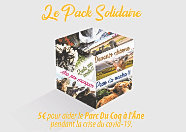 pack solidaire-01.jpg