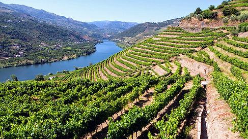 Douro12.jpg