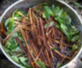 Ayahusca Vine and Chakruna Leaves