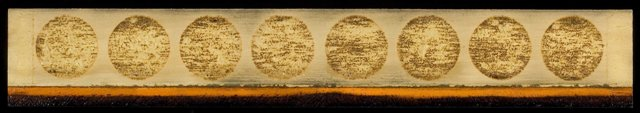wood - Orange Field with tar. 6.5 by 36 inches.  Web.jpg