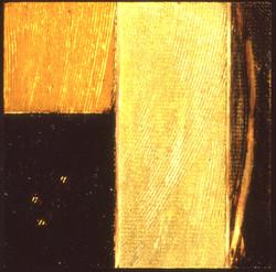 t1696.jpg