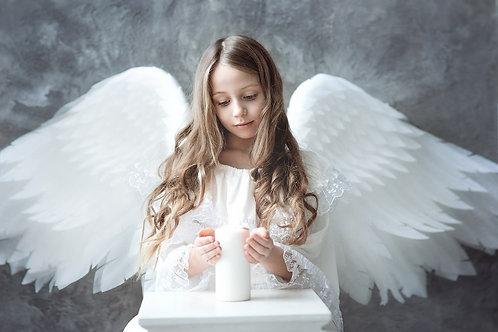 №6 крылья ангела