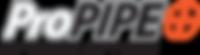ProPIPE Reporting Software