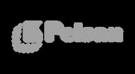 pelsan-logo.png