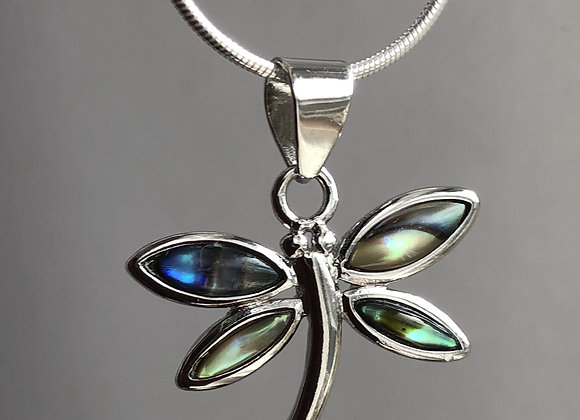 ABALONE DRAGONFLY