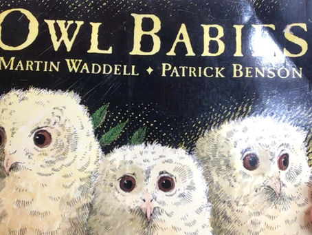 Owl Babies with Miss Melanaphy