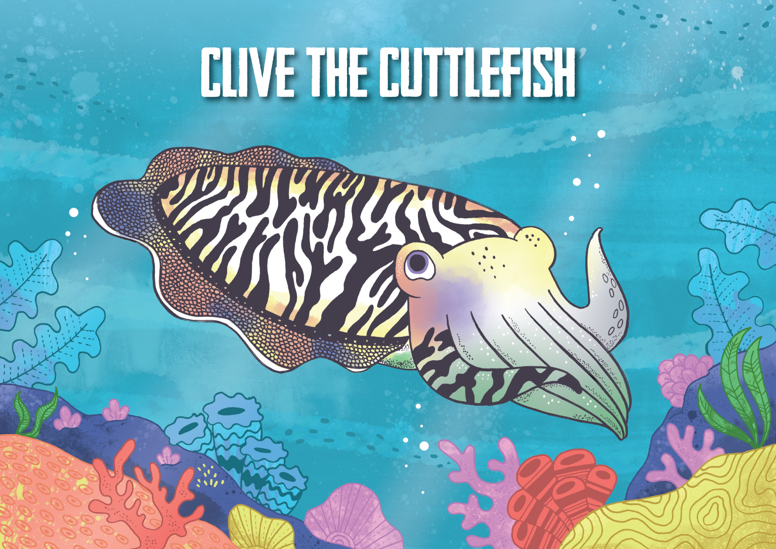 Clive the Cuttlefish cvr