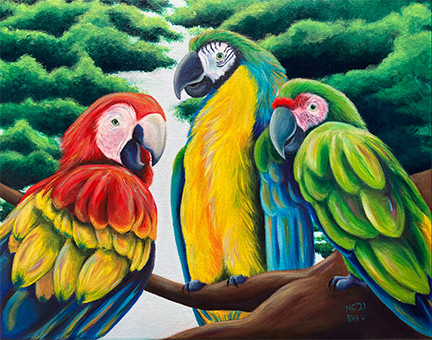 Macaws on a Branch