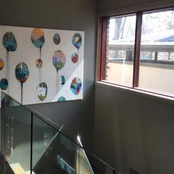 Colour Harmonies Balloons in Situ