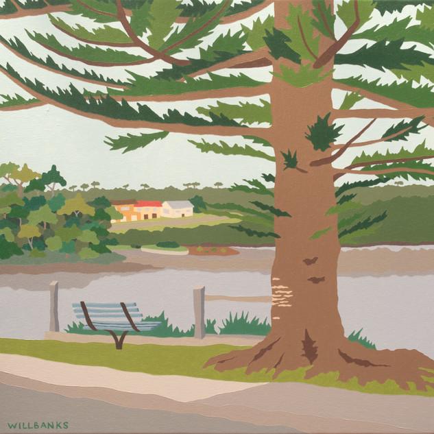 Ulladulla Harbour Pine