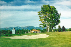 Cottonwoods and Clubhouse