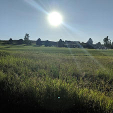 Golfb4Work