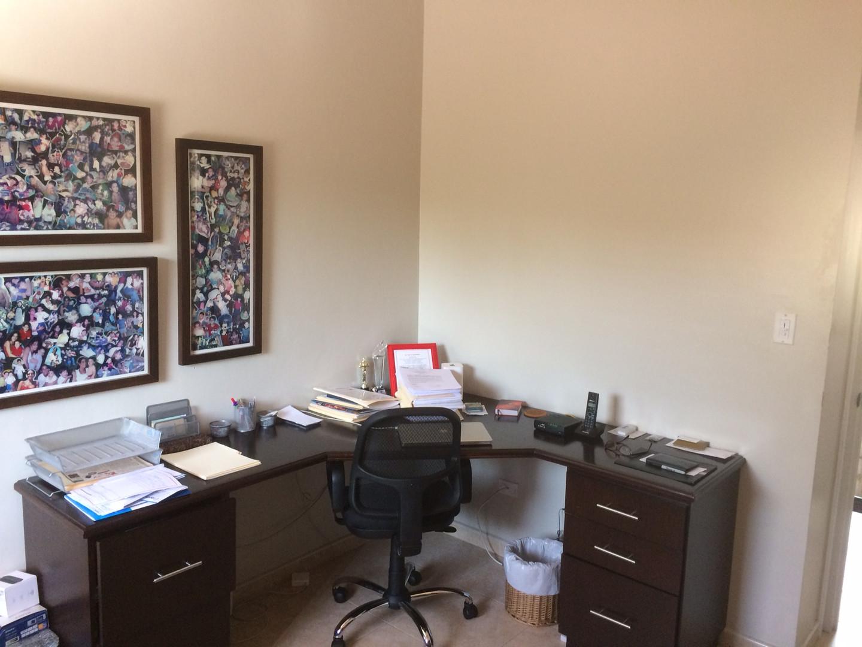 Palmeras Oficina-Estudio.JPG