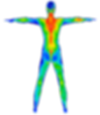 whole body Thermography Thermal imaging breast thermography Palos Heights Il Illinois meditherm Body & Soul