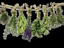 herbal medicine Body & Sou Palos Heights IL