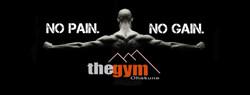 cover image no pain no gain
