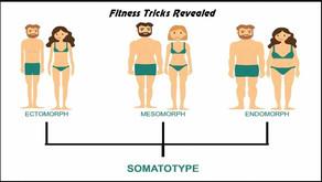 """""""Tạng người"""" Somatotypes - Lật tẩy trò lừa của Fitness online"""
