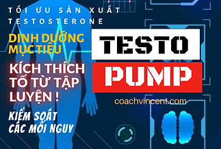 Testo Build.png