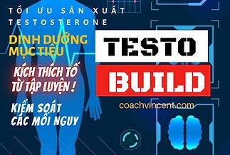 Testo Build (4).png