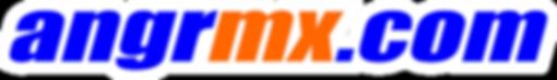 logos ANGR 20192.png