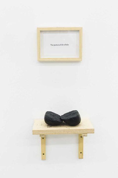 The pursuit of the Whole, Renata De Boni