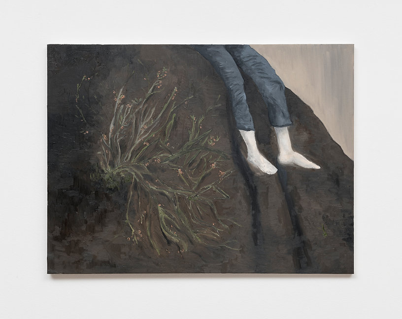Renata De Bonis, Pedra, oil and wax on c