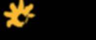 VYFS Logo.png
