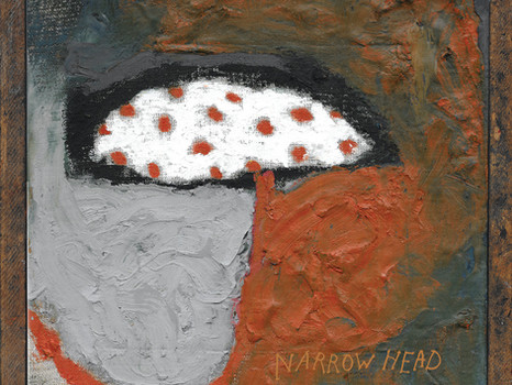 NARROW HEAD release a brilliant new video for single 'Hard To Swallow' out now