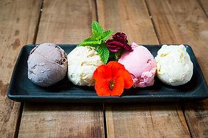 ice cream web.jpg