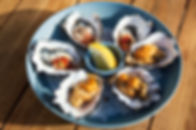oysters 6 web.jpg