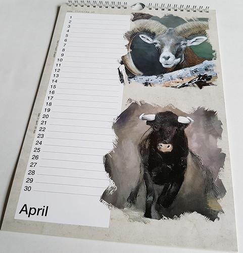 Voorbeeld April