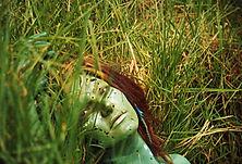 111Anke CoromandelNZ1996.jpg