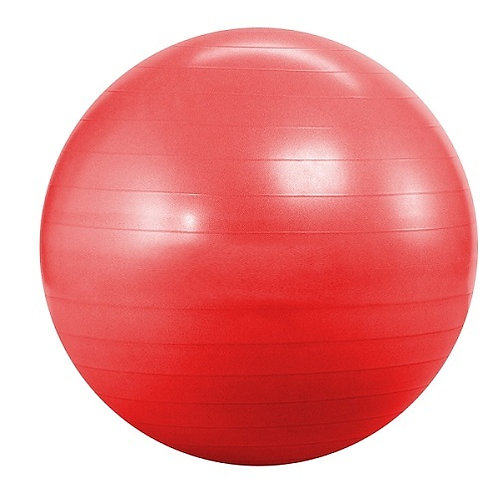 55cm Fitball