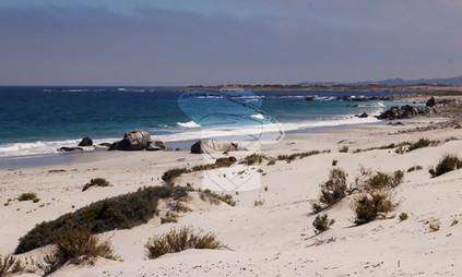 Playa Blanca, Atacama