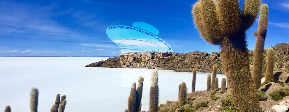 Isla del Pescado, Salar de Uyuni