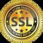 SSL, cryptage de sécurité, sécurité des données, couche de sockets sécurisés